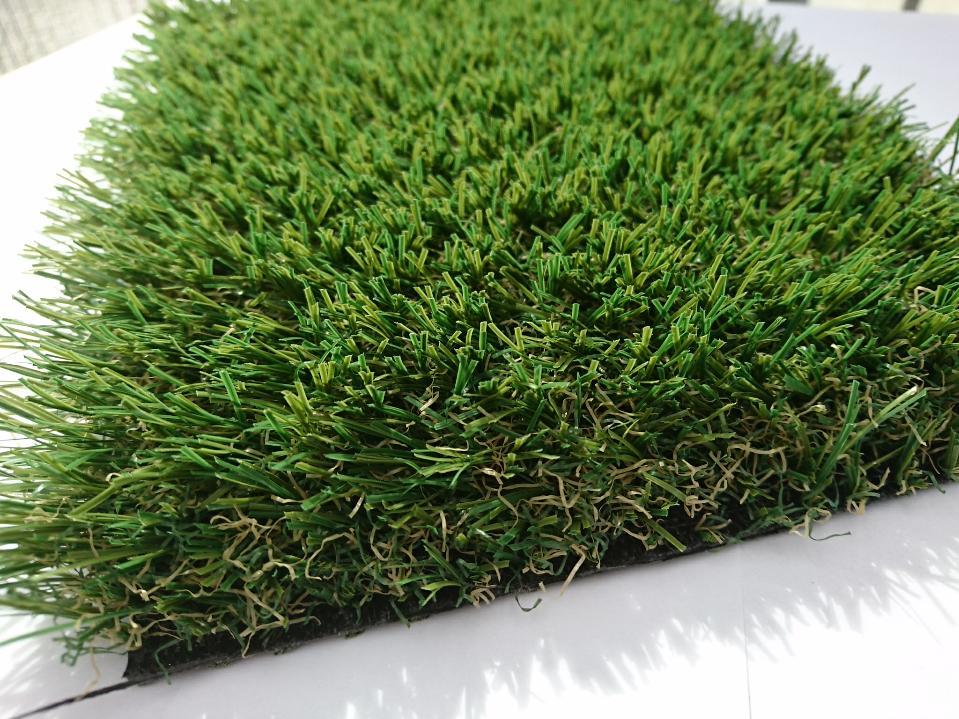 HAR VERHEIJDEN, natural 33 mm C-shape